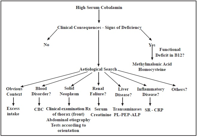 Suggested first line of clinical examinations when confronted with cases of high serumcobalamin
