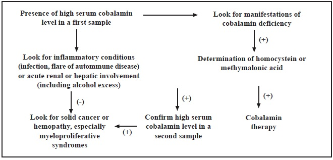 Suggested management guidelines for clinicians in cases with high serum cobalamin